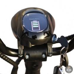 CityCoco Batterie amovible ATAA CARS TROTTINETTES
