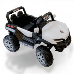 kart et buggies buggy electriques pour enfants pas cher batterie 6v 12v 24v 36v telecommande Buggy little 12v